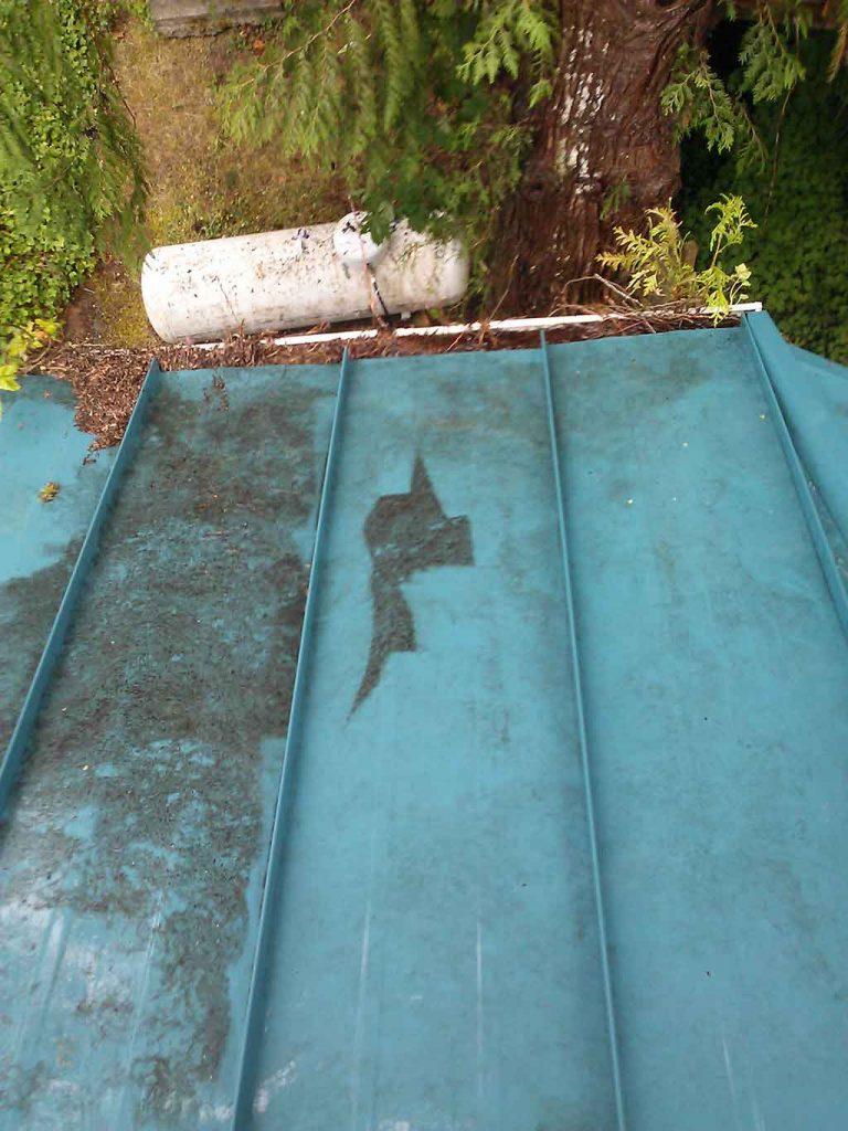 Sludge on Metal Roof