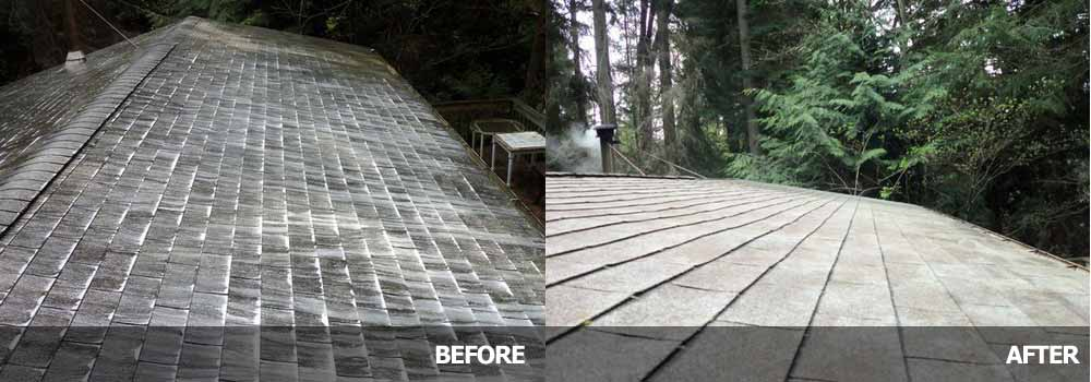 Cleaning Amp Moss Proofing By Guardian Roofing In Seattle