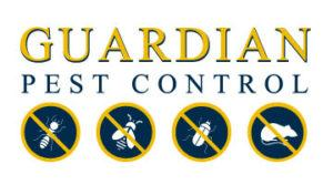 Pest Control Services Seattle