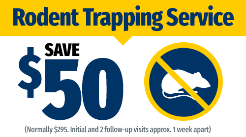 $50 Off Rodent Trapping Service