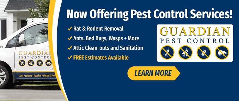 Pest Control New