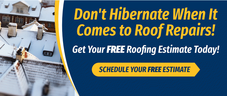 Don't Hibernate on Roof Repairs