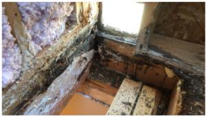Flat Roof Cavity Damage