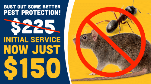 $150 Initial Pest Control Service