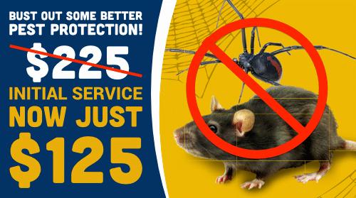 $125 Initial Pest Control Service