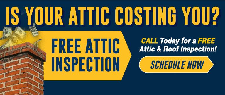 FREE Attic Inspection