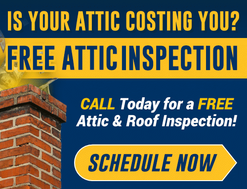 FREE Attic Inspection