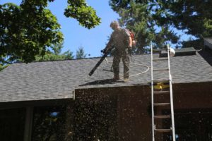 Guardian cleaning leaves off roof