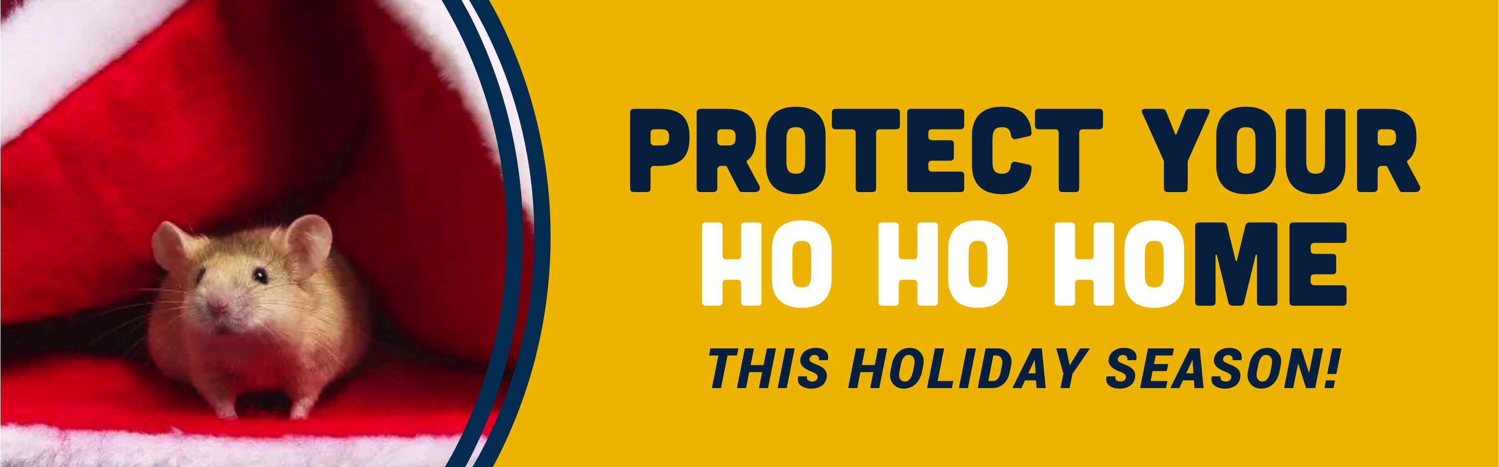 Protect Your Home with Guardian Pest Control Services this Season