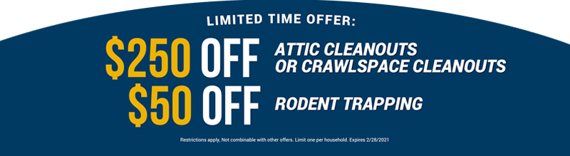 Attic Cleanouts, Crawlspace Cleanouts & Rodent Trapping Special