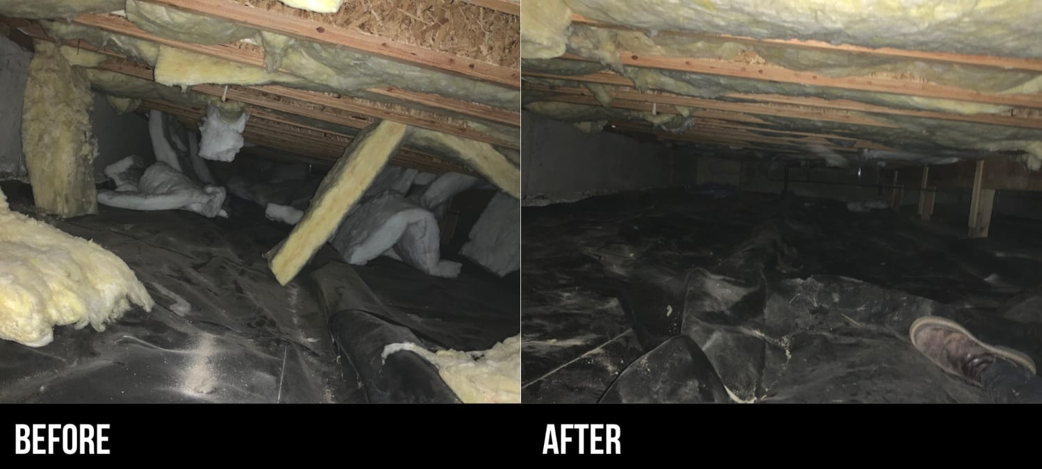 Crawlspace Cleaning Before & After