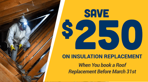 $250 Off Insulation Replacement