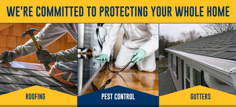 Committed To Protecting Your Home